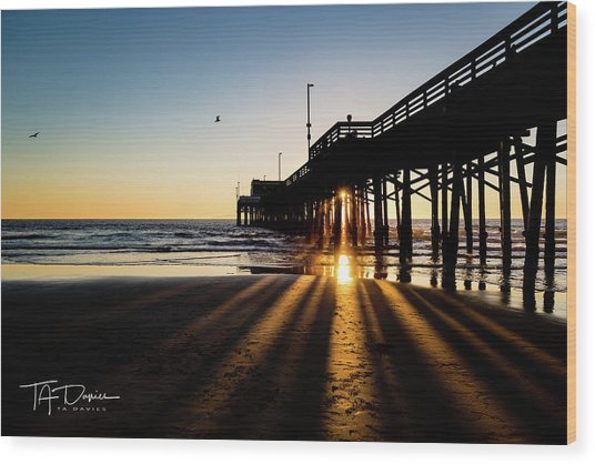 Rays Of Evening Wood Print