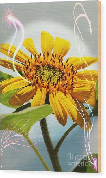 Reach For The Sun Wood Print
