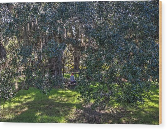 Reading In The Shade Of Live Oaks Wood Print