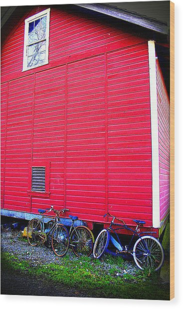 Ready For A Bike Ride Wood Print by Karla DeCamp