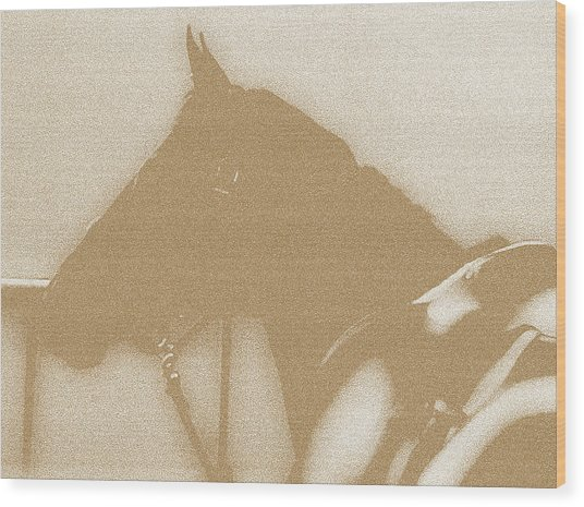 Ready To Ride Wood Print by Donna Thomas