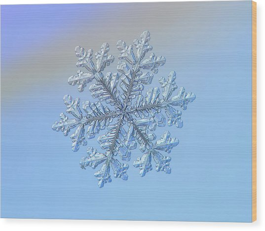 Wood Print featuring the photograph Real Snowflake - Hyperion by Alexey Kljatov