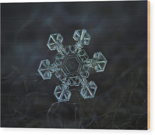 Wood Print featuring the photograph Real Snowflake - Ice Crown New by Alexey Kljatov