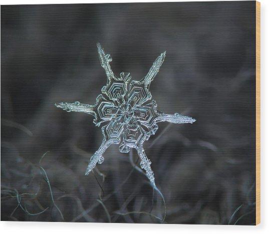 Real Snowflake Photo - The Shard Wood Print