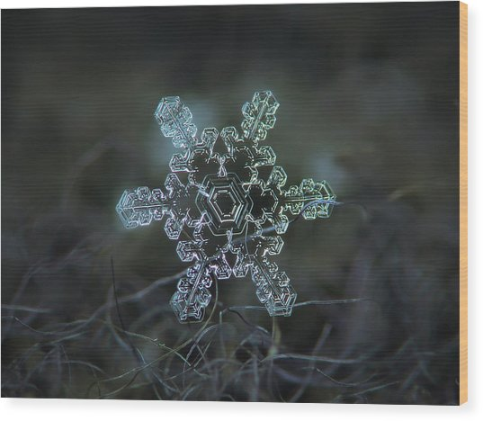 Real Snowflake - Slight Asymmetry New Wood Print