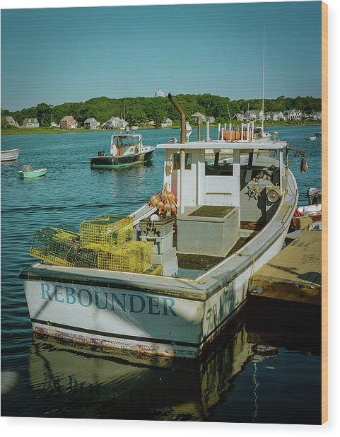 Rebounder Wood Print