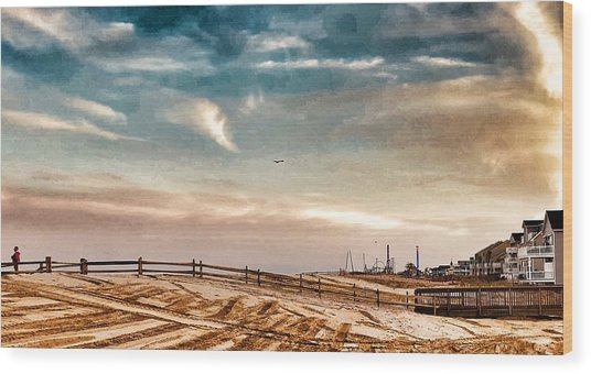 Rebuilding The Ortley Dunes  Wood Print by Vincent DeLucia