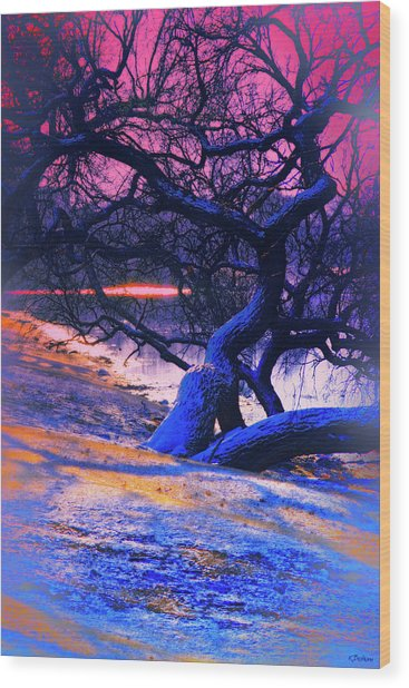 Reclining On The Banks Wood Print