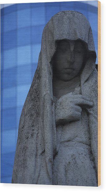Recoleta Statue Wood Print by Marcus Best
