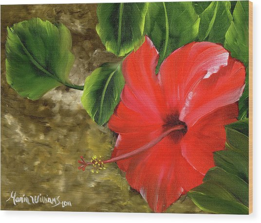 Red Amapola Wood Print by Maria Williams