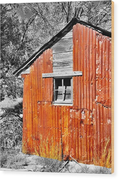 Red Armor Wood Print