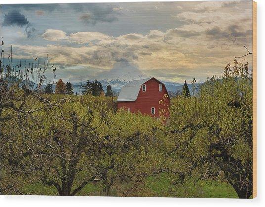 Red Barn At Pear Orchard Wood Print