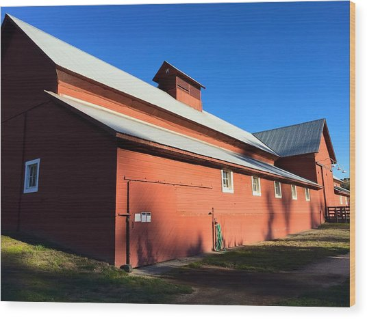 Red Barn, Blue Sky Wood Print