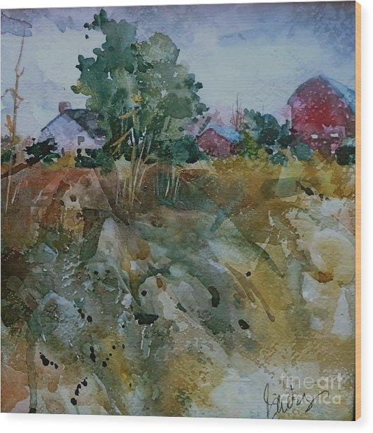 Red Barn Hill Wood Print by Xx X