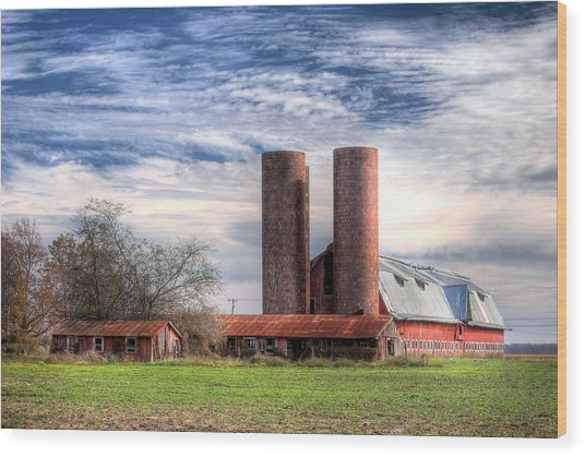 Red Barn II Wood Print by Michael Taylor