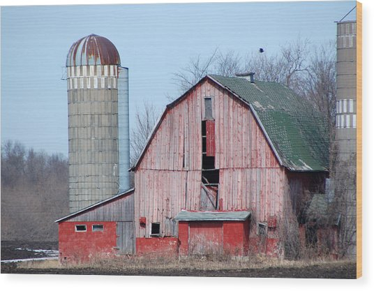 Red Barn On Texas Avenue Wood Print by Mary Pearson