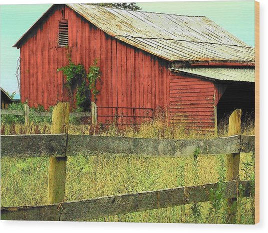 Red Barn With Vines Wood Print by Michael L Kimble