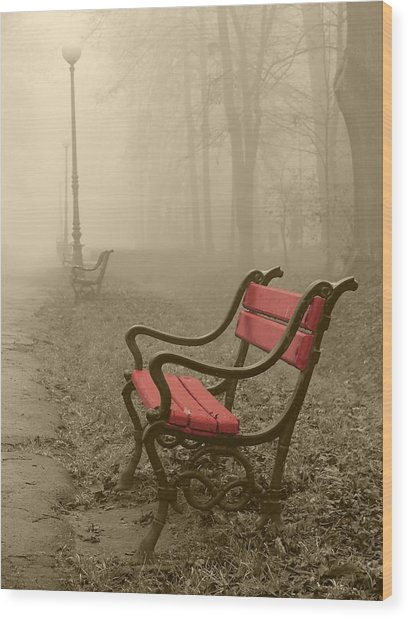 Red Bench In The Fog Wood Print by Jaroslaw Grudzinski