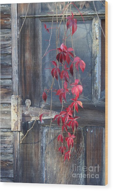 Red Wood Print by Bernadette Kazmarski