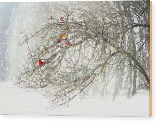 Red Bird Convention Wood Print