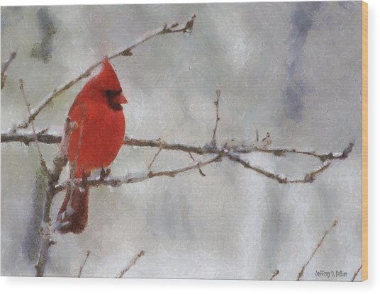 Red Bird Of Winter Wood Print