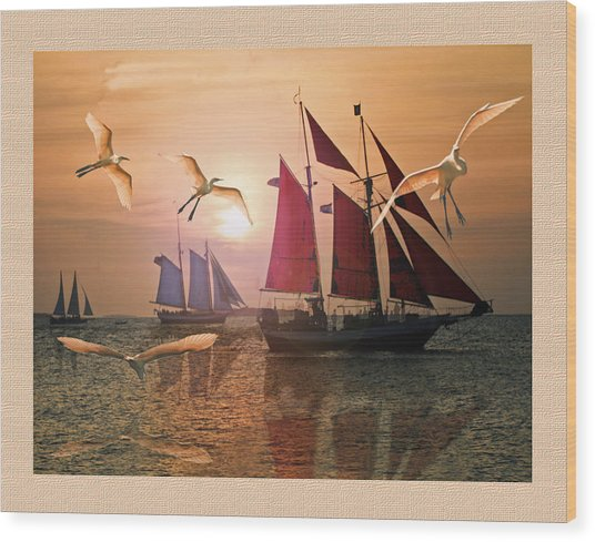 Red  Blue And White Sails At Sunset  Wood Print by John Breen