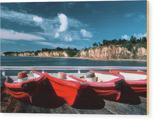 Red Boat Diaries Wood Print