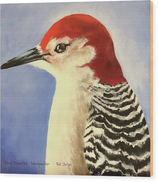 Red Breasted Woodpecker Two Wood Print