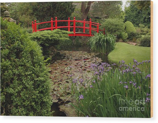 Red Bridge Wood Print
