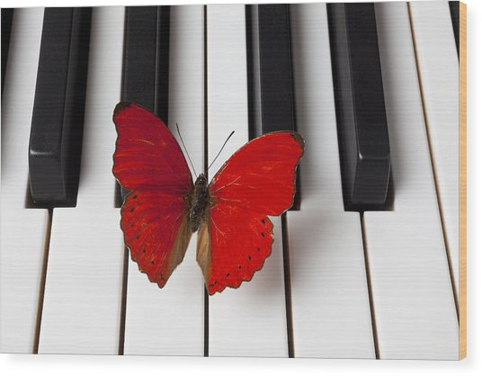 Red Butterfly On Piano Keys Wood Print