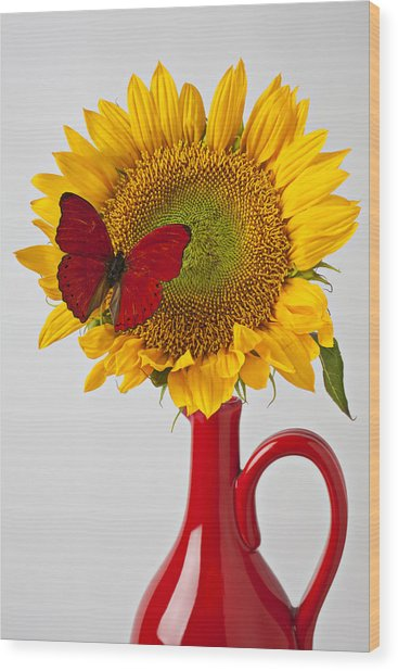 Red Butterfly On Sunflower On Red Pitcher Wood Print