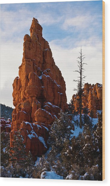 Red Canyon Sentinel Wood Print by James Marvin Phelps