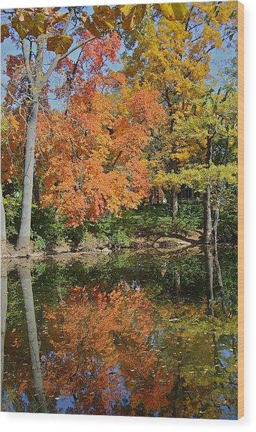 Red Cedar Banks Wood Print