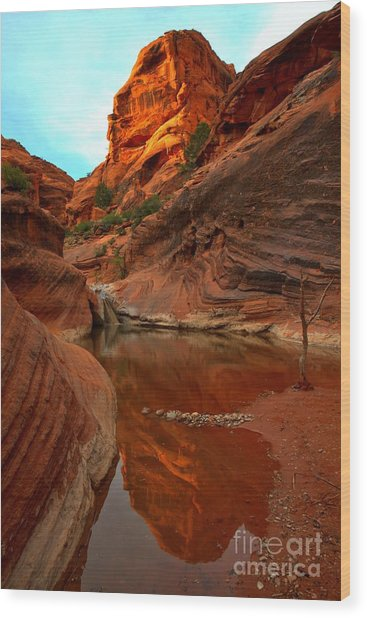 Wood Print featuring the photograph Red Cliffs Reflections by Adam Jewell