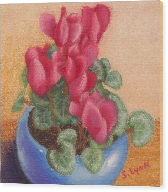 Red Cyclamen Blue Pot Wood Print