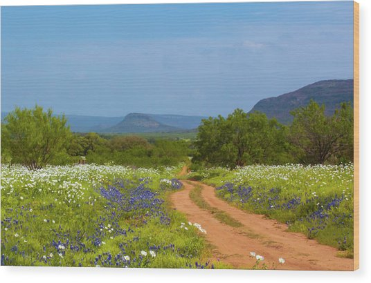 Red Dirt Road With Wild Flowers Wood Print
