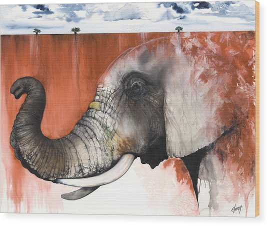Red Elephant Wood Print