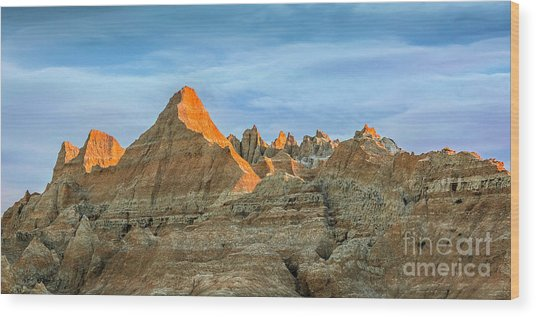 Red Faced Panorama Wood Print