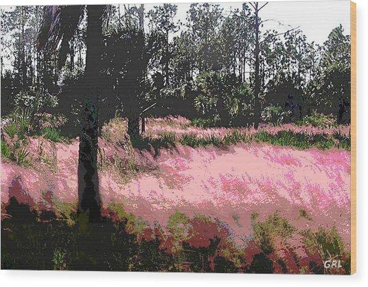 Red Fire Grass Field Gulf Coast Florida Detail Wood Print by G Linsenmayer
