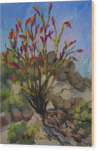 Red Flame Ocotillo 5 Wood Print