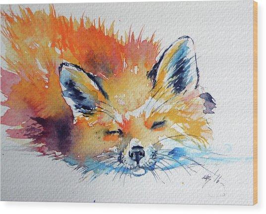 Red Fox Sleeping Wood Print