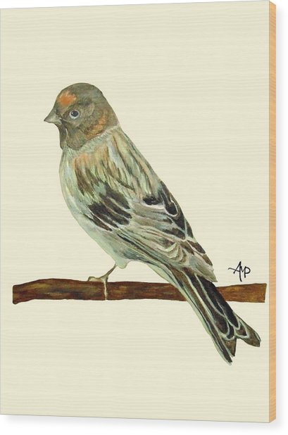 Red-fronted Serin Wood Print