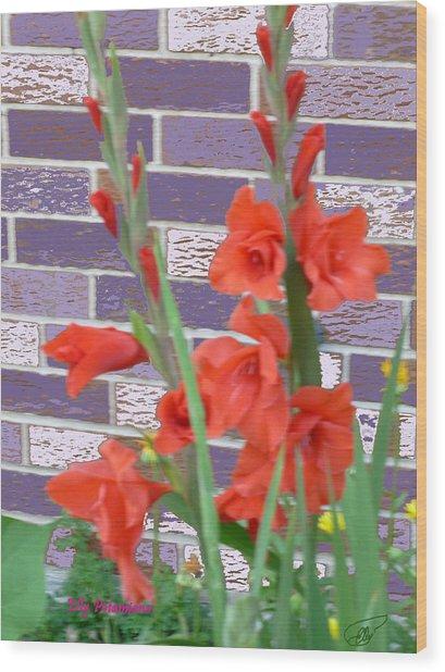 Red Gladiolas Wood Print