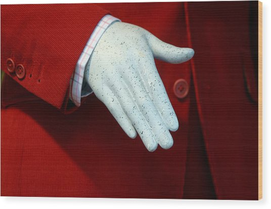 Red Handed Wood Print by Jez C Self