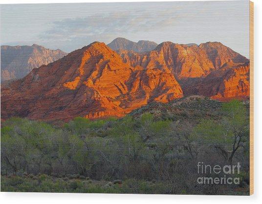 Red Hills Wood Print