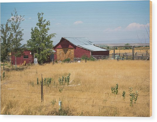 Red Home On The Range Wood Print