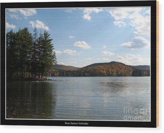 Wood Print featuring the photograph Red House Lake Allegany State Park Ny by Rose Santuci-Sofranko