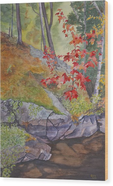 Red Maple Leaves Wood Print by Debbie Homewood