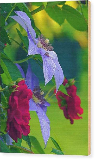 Red Meets Lavender Wood Print