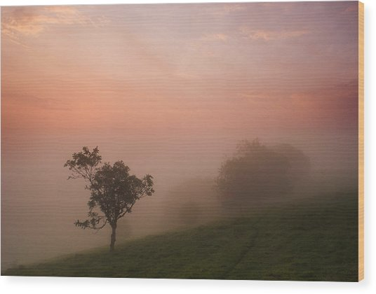 Red Mist On The South Downs Wood Print